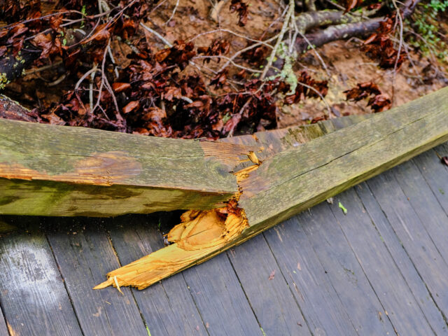 Broken Treated Lumber Board